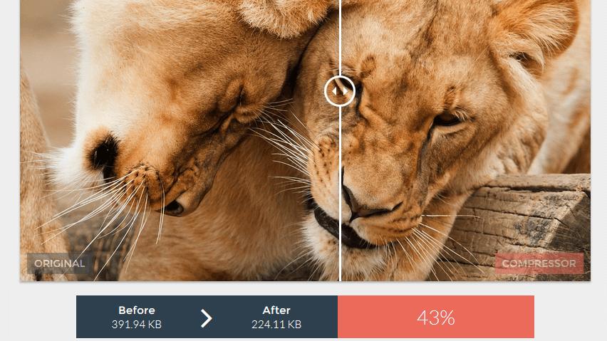 Jak zmenšit velikost fotky za pár vteřin