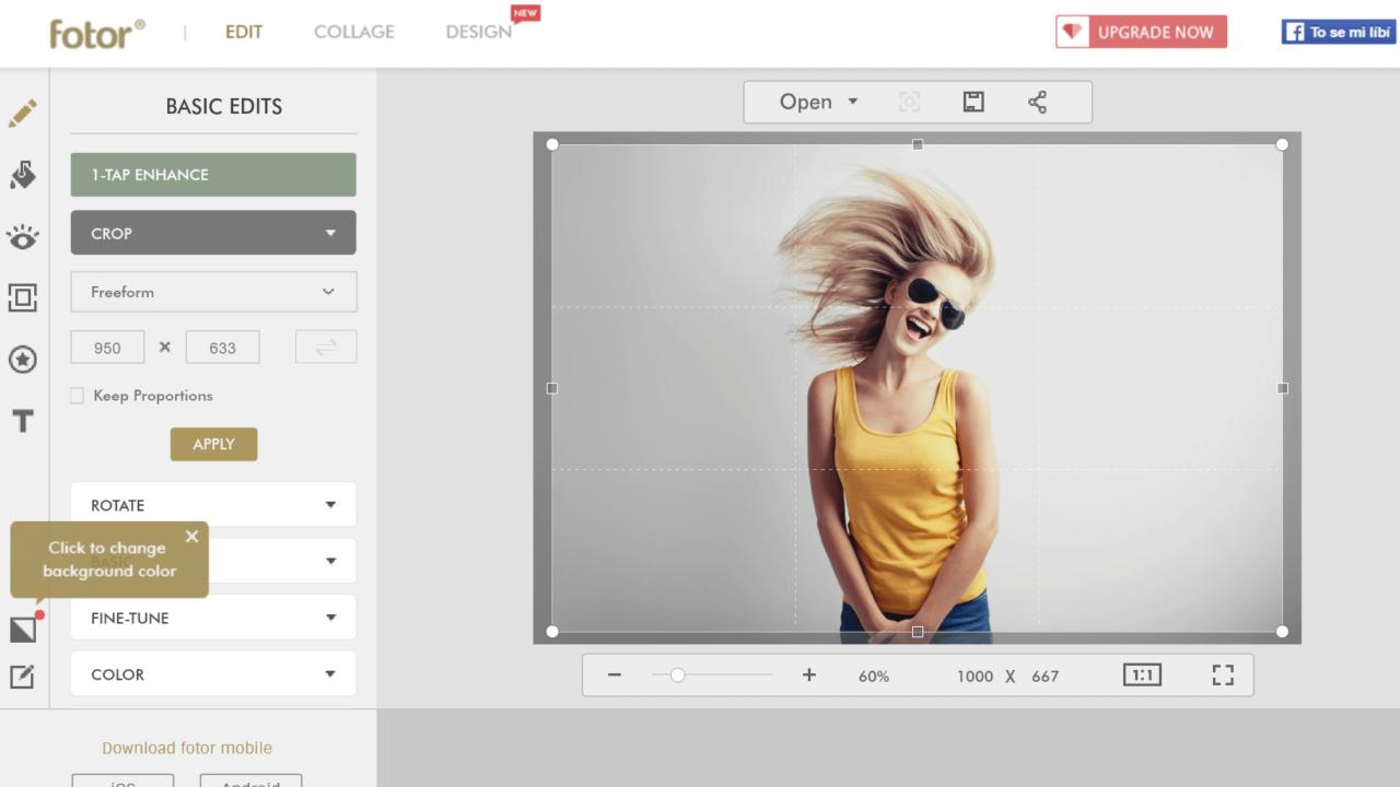 Úprava fotek a tvorba grafiky online zdarma